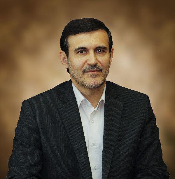 فتحی: ممنوعیت استفاده از رنگ خاص در انتخابات مجلس مشمول دوران تبلیغات نمی گردد