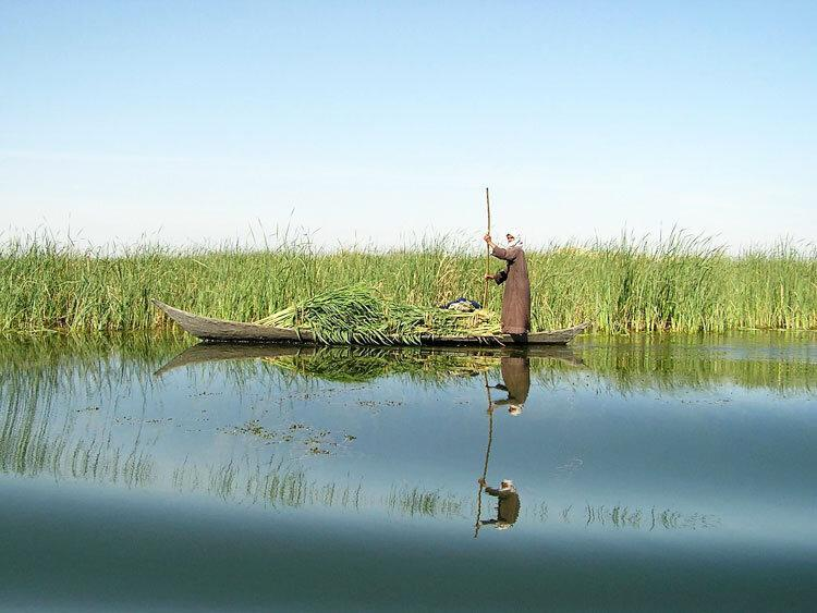 رهاسازی بخشی از حقابه زیست محیطی تالاب هامون