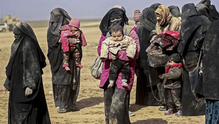 فعالیت شبکه اروپایی برای فراری دادن عروس های داعش