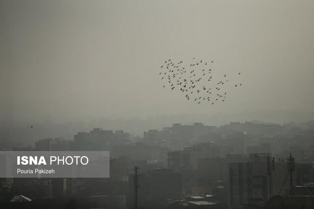همزمانی آلودگی هوا و شیوع کرونا نفس ها را تنگ نموده است