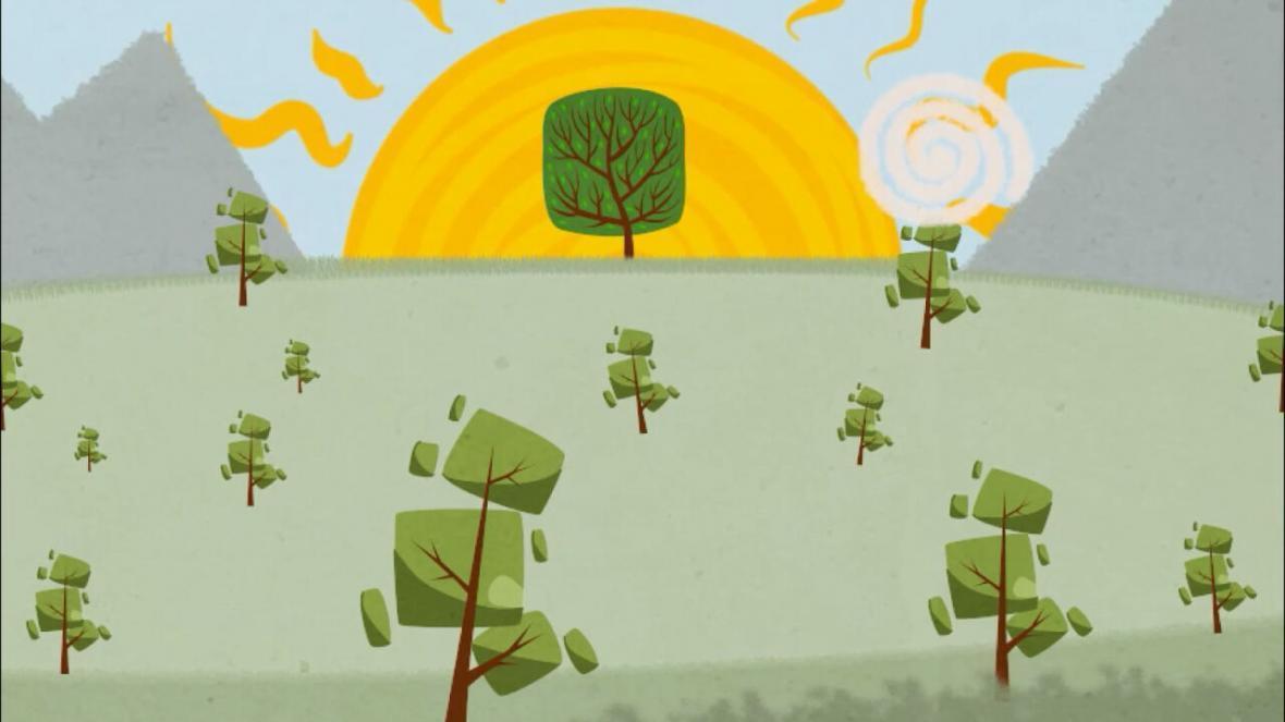 خبرنگاران انیمیشن هنرمند مراغه ای مدال طلای المپیاد فیلمسازی کشور را گرفت