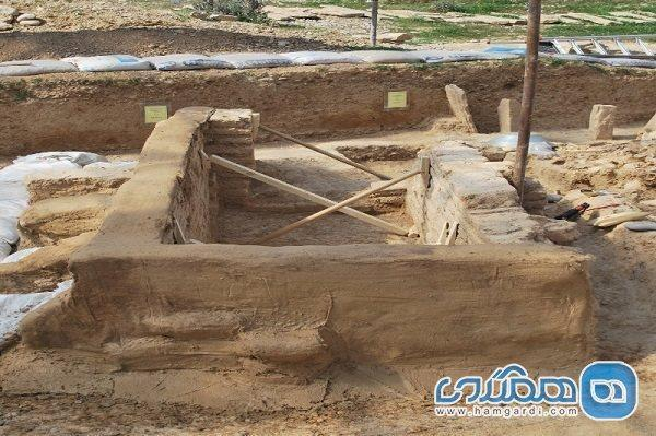 پیشقدم شدن باستان شناس پیشکسوت برای حفاظت از چگاسفلی