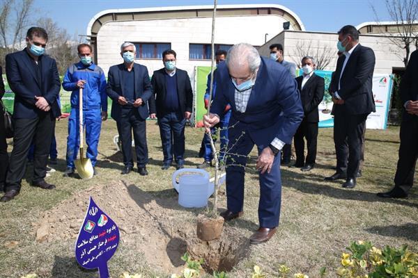 آیین گرامیداشت هفته درختکاری در آموزشگاه ملی المپیک برگزار گشت