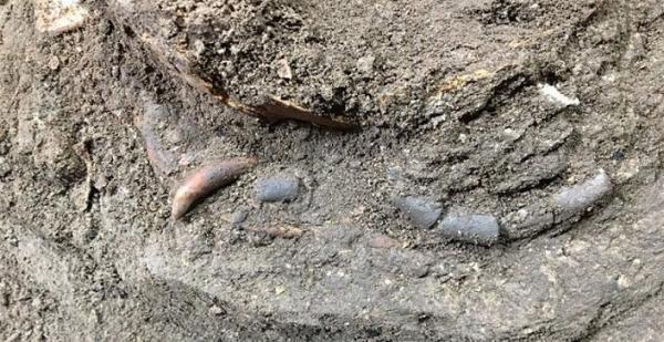 کشف نشانه هایی از انسان شکارگر دوران باستان در غار هوتو